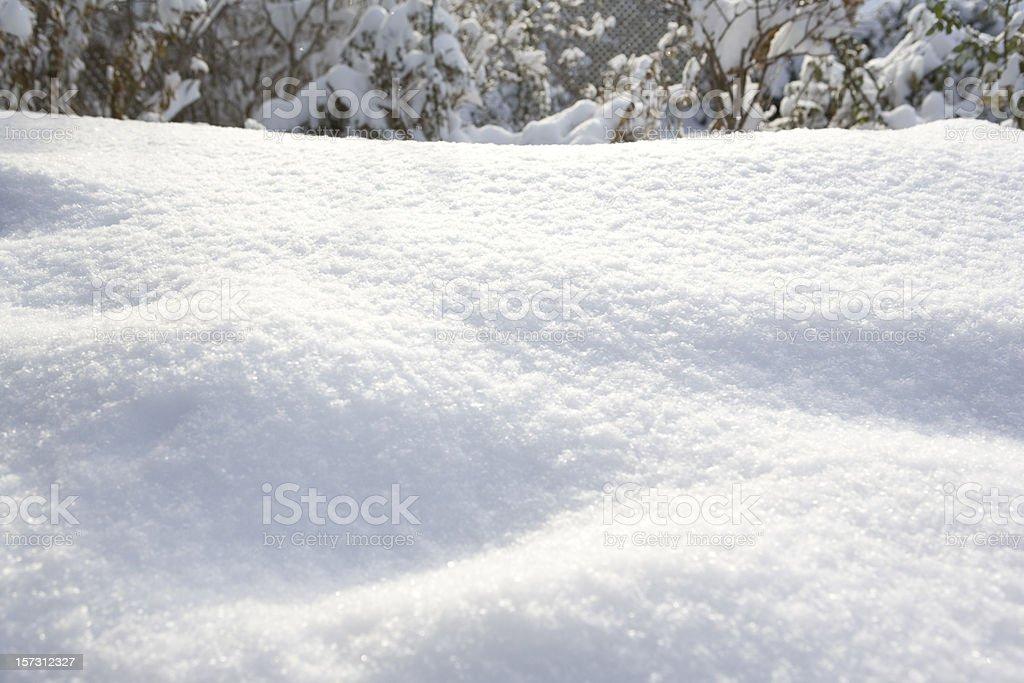 Snow Drift stock photo