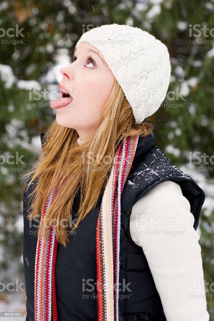 Snow Fall royalty-free stock photo