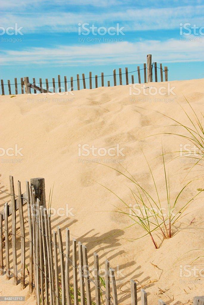 Snow Fence, Dune Grass & Bottle stock photo