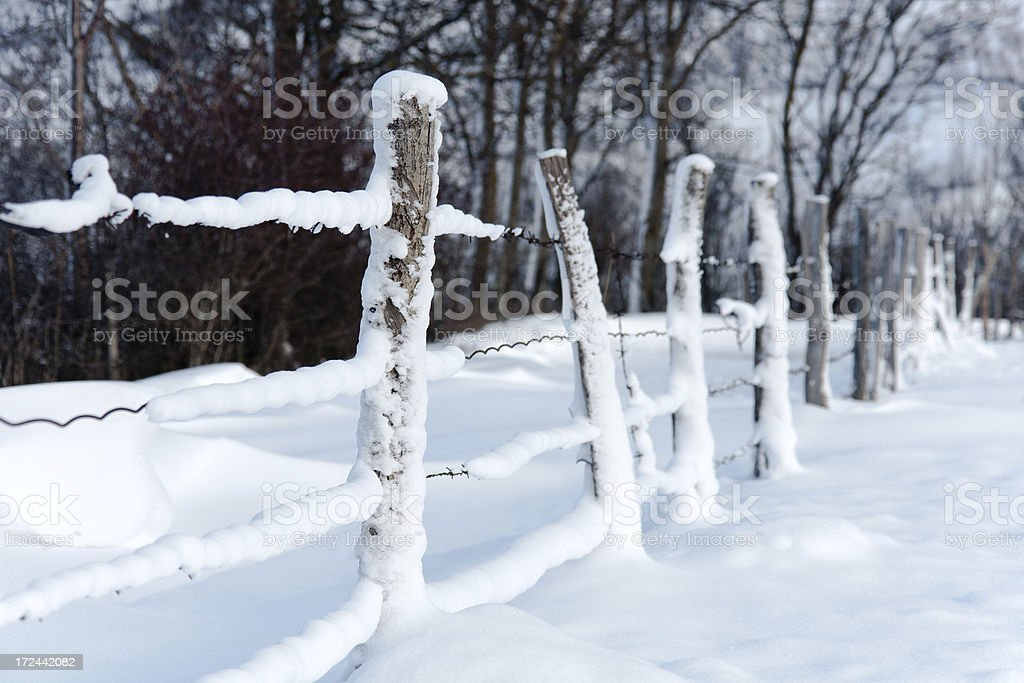 Snow fence royalty-free stock photo