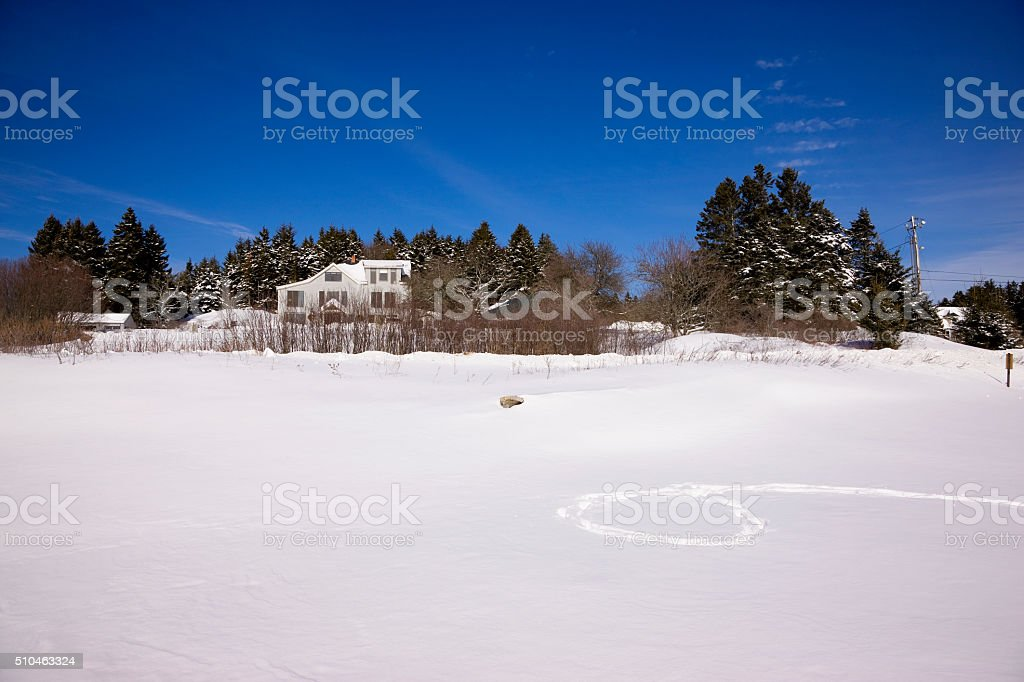 Snow field in Maine stock photo
