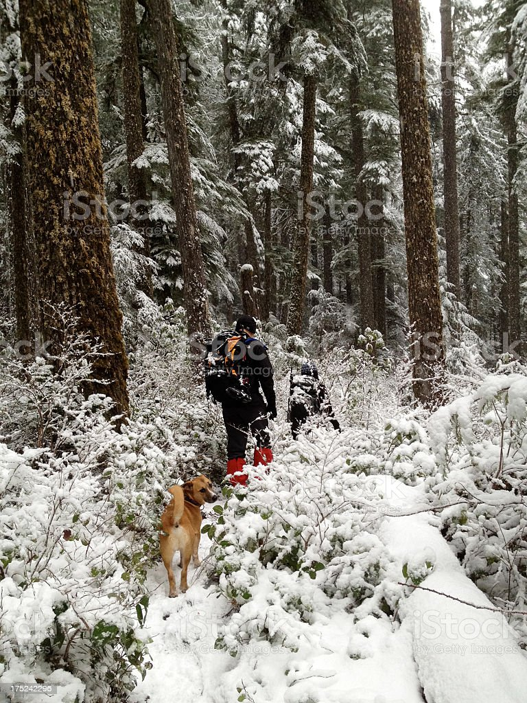 Snow Hike royalty-free stock photo