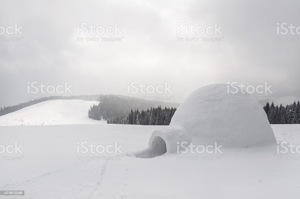 snow igloo stock photo
