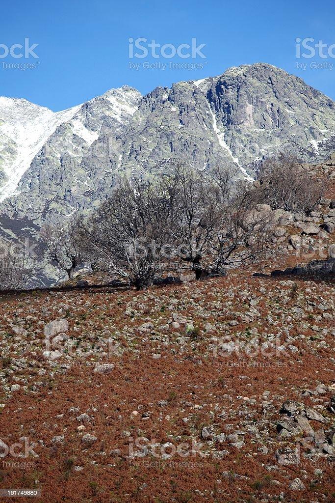 雪のシエラデ Gredos ロイヤリティフリーストックフォト