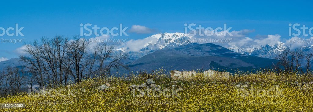 Snow in Sierra de Gredos stock photo