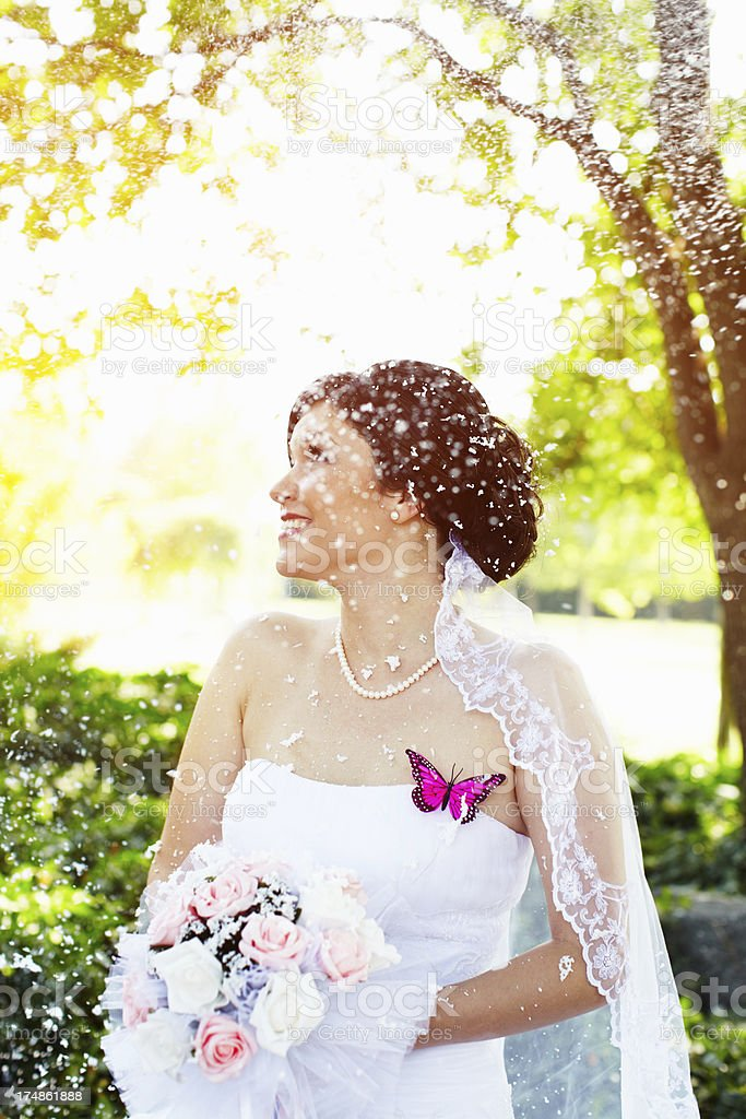 Snow in summer royalty-free stock photo