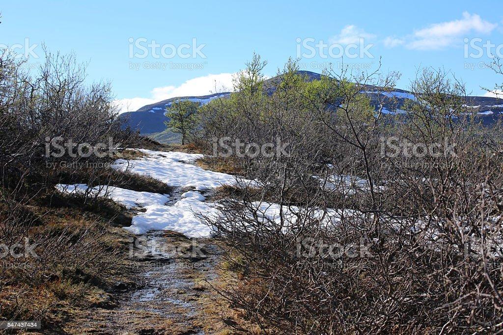 Snow in summer while ascending the Ansaett in Sweden stock photo