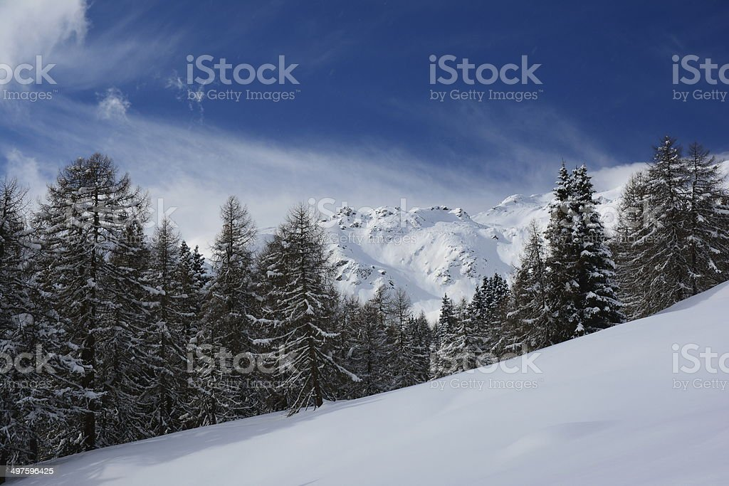Neve in Val d'Ultimo - Ultental stock photo