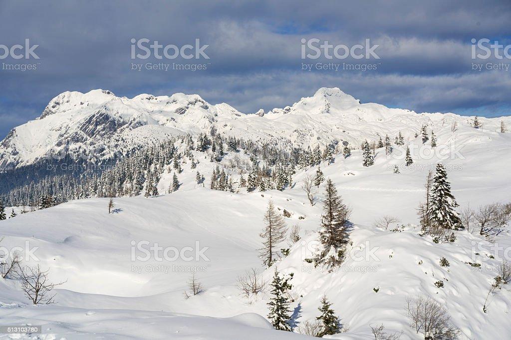 Snow landscape of Plateau Velika Planina, Slovenia stock photo