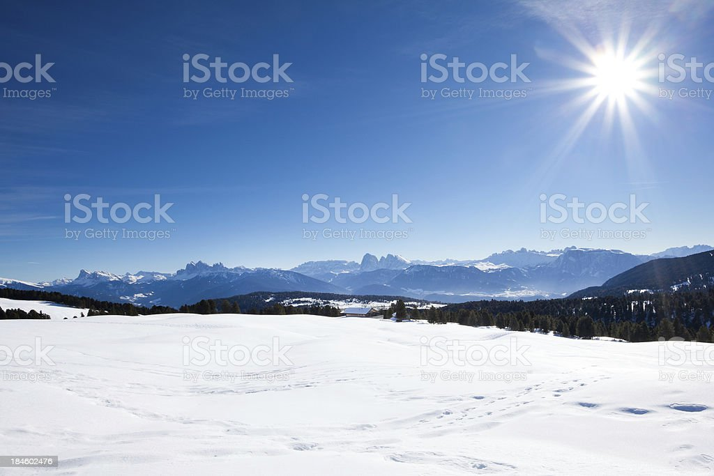 Snow Landscape with Blue Sky and Sun royalty-free stock photo