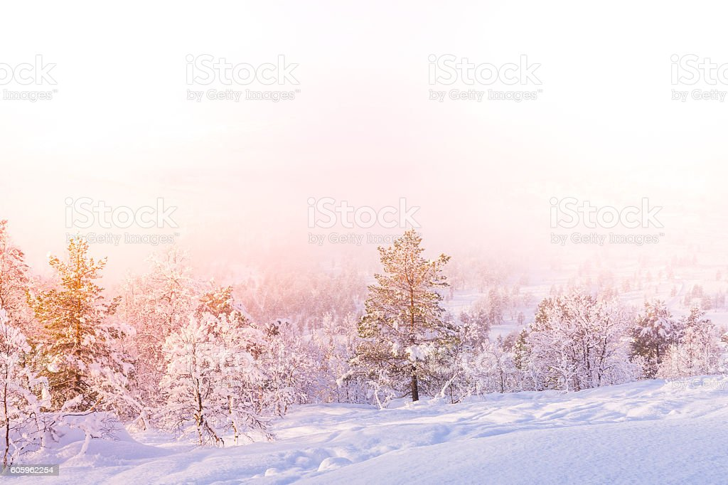 Snow Landscape with free space - Stryn (Norway) stock photo