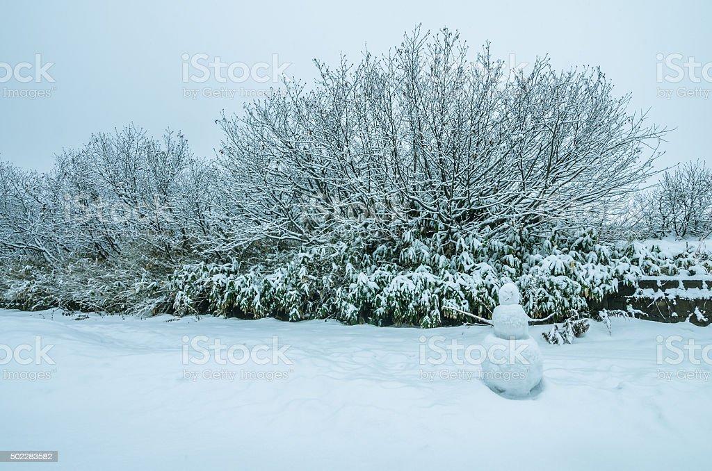 Снежный человек Стоковые фото Стоковая фотография