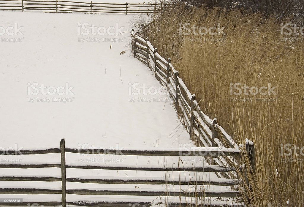 Snow, Meadow Weeds and Fence. royalty-free stock photo