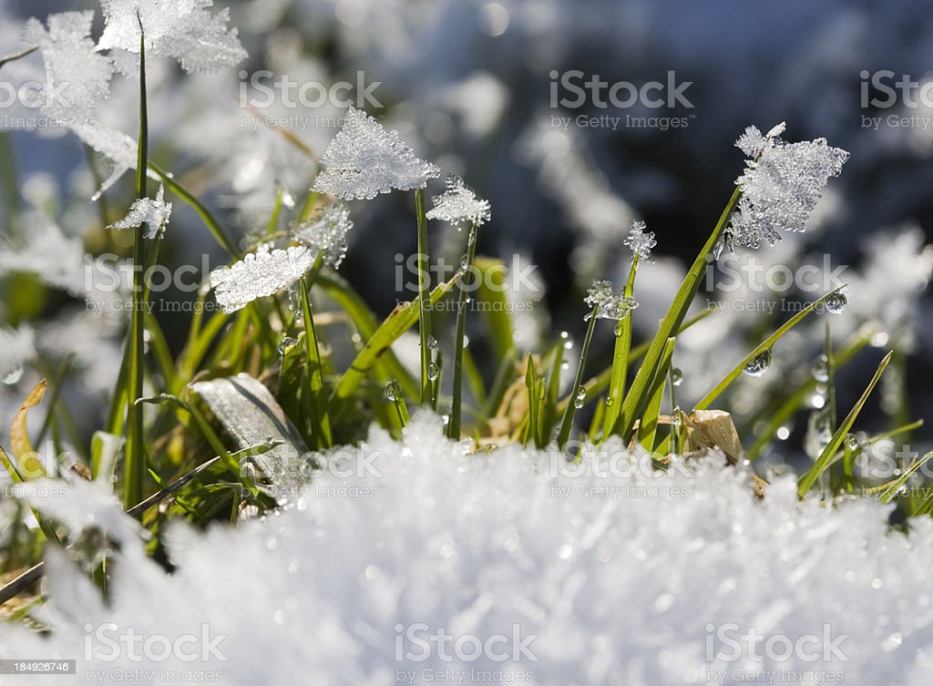 Snow melt stock photo