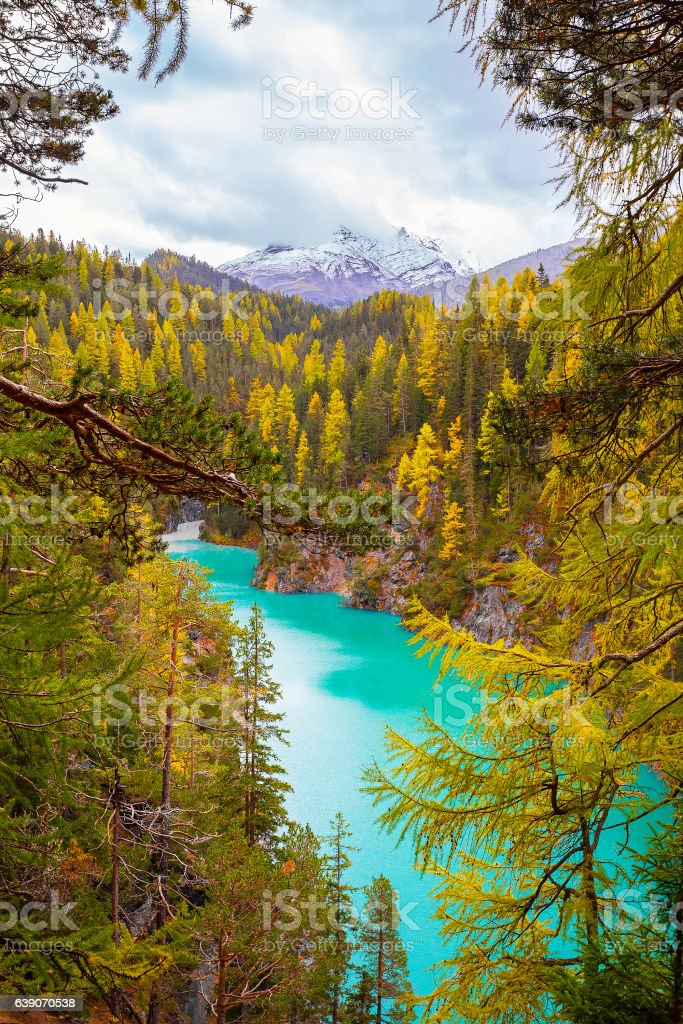Snow mountain and Autumn forest stock photo