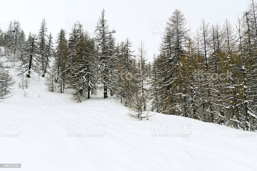 snow mountain slope in skiing area Via Lattea stock photo