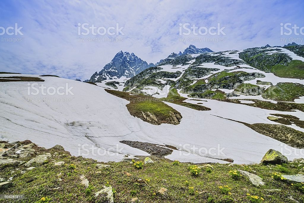 snow mountain with green field stock photo