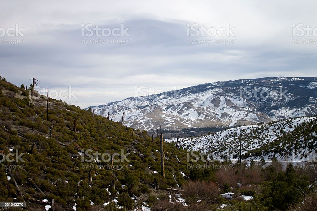 Snow mountains with logged hill stock photo