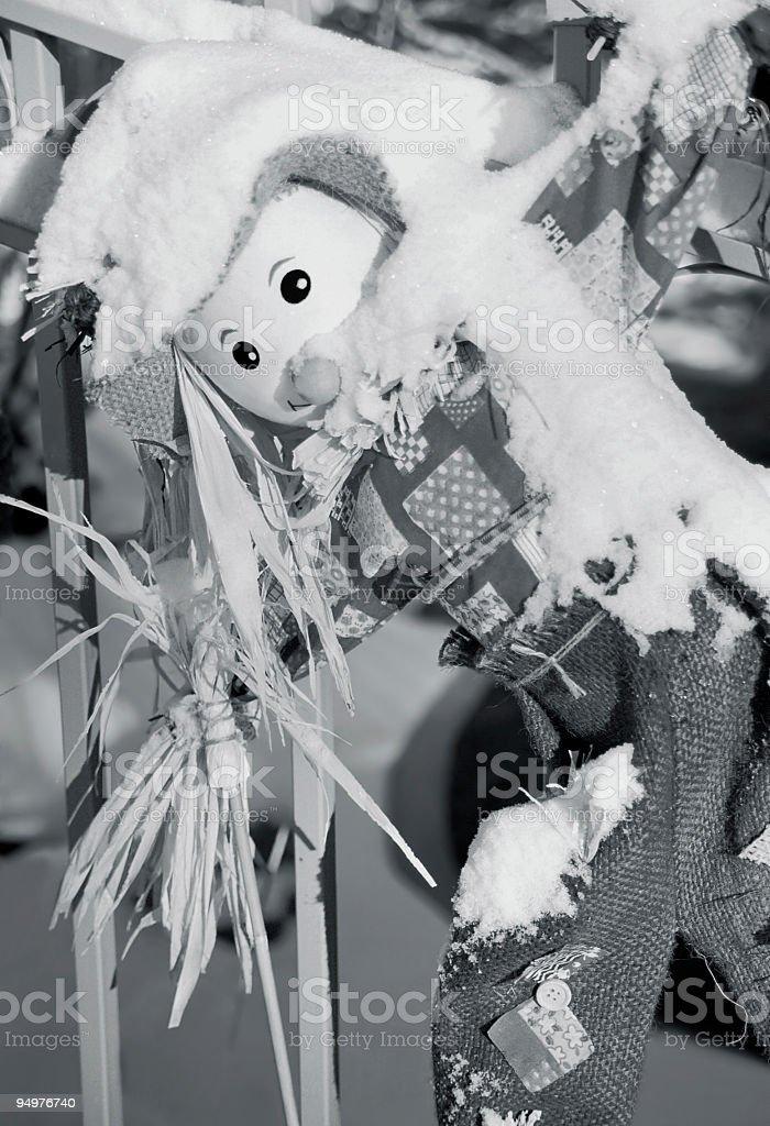 Snow on the Scarecrow royalty-free stock photo