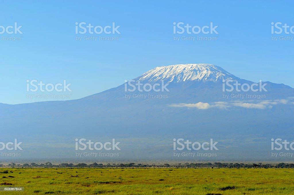 Snow on top of Mount Kilimanjaro stock photo
