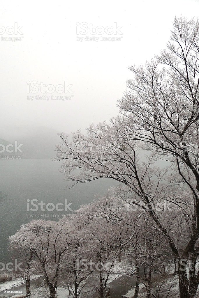 Snow over the lake in Hakone stock photo