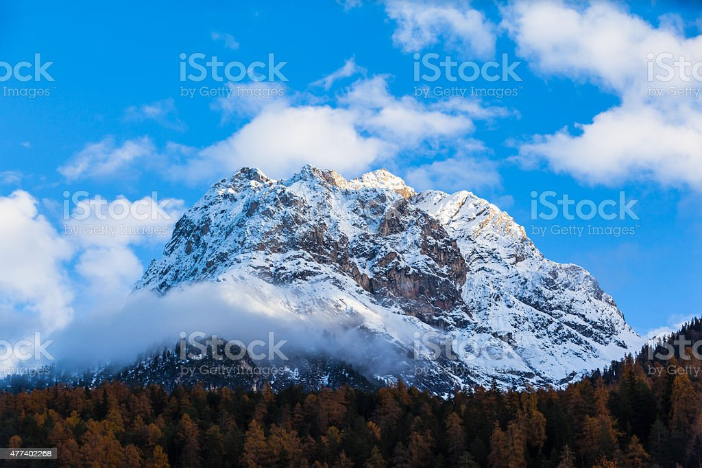 Snow peak above forest stock photo