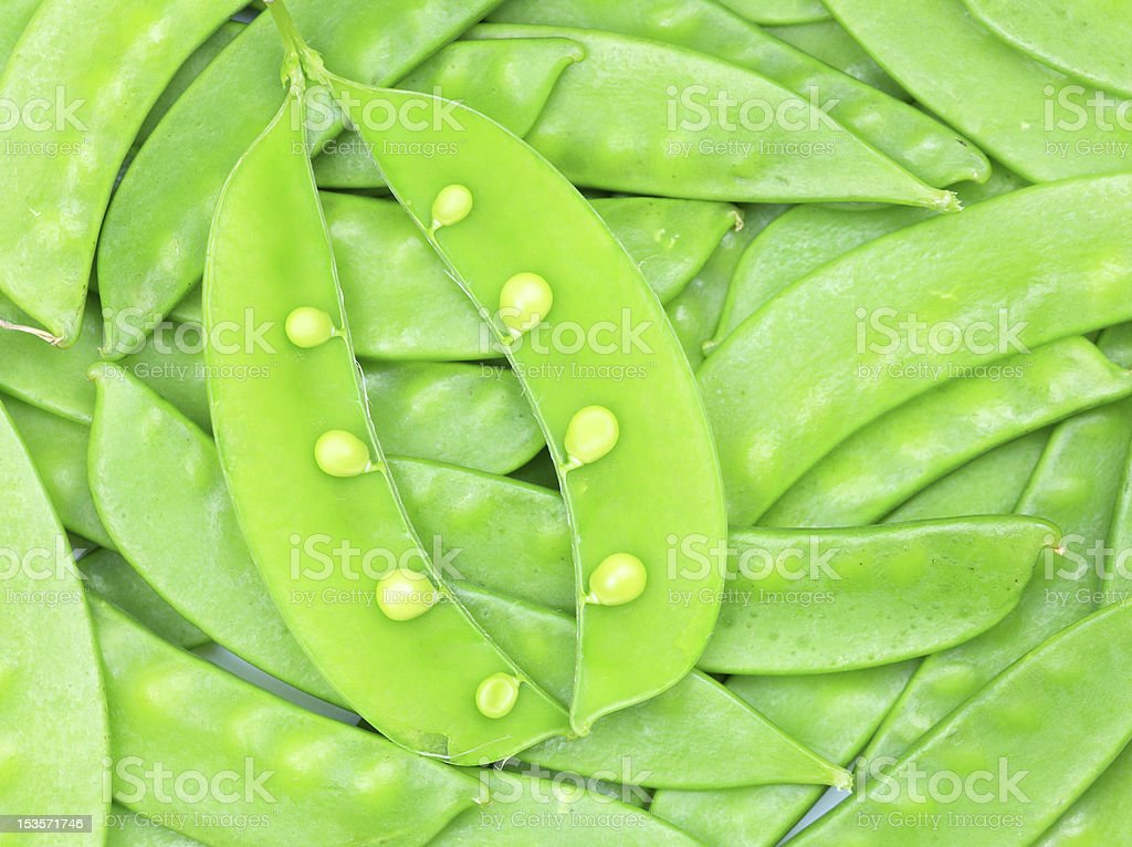 snow peas royalty-free stock photo