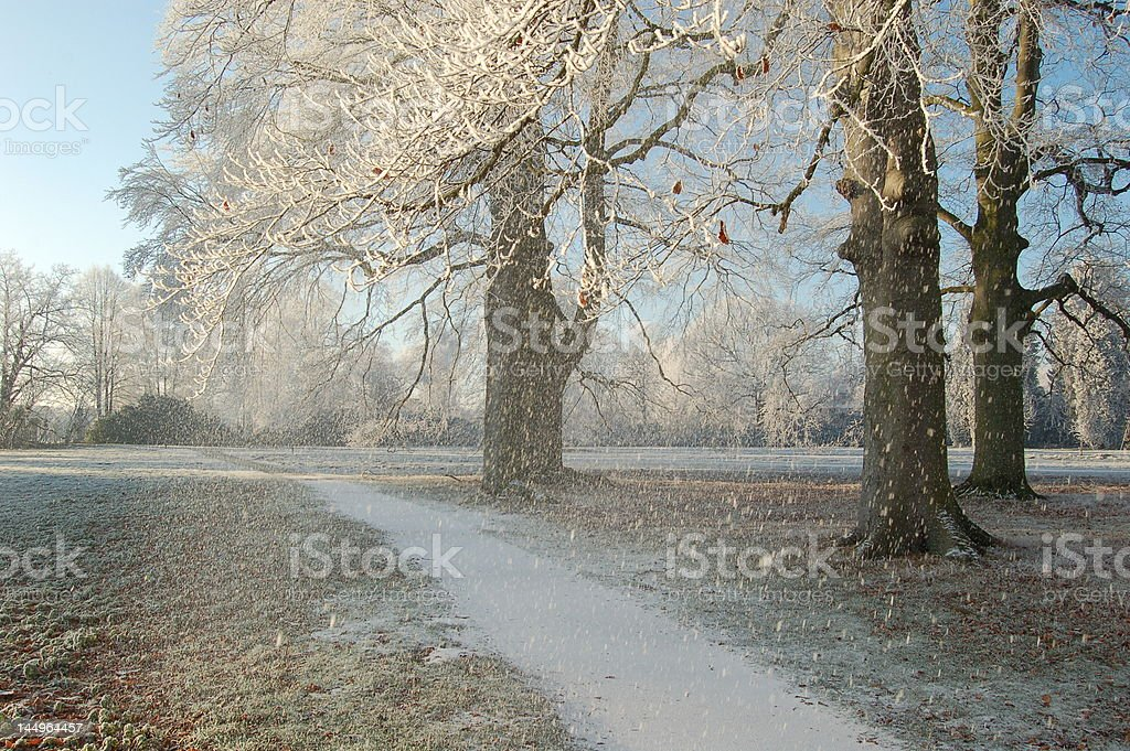 snow royalty-free stock photo