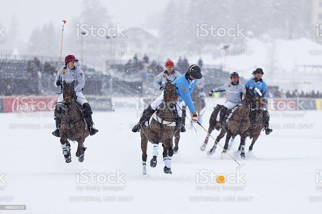 Snow Polo Nearside Forehand royalty-free stock photo