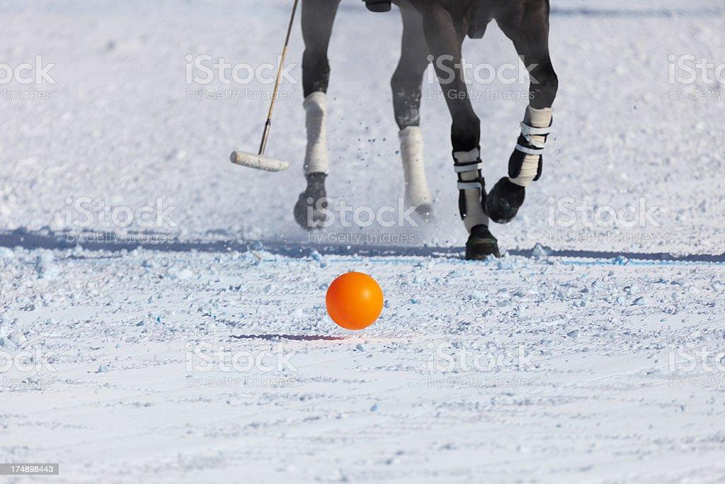Snow Polo stock photo