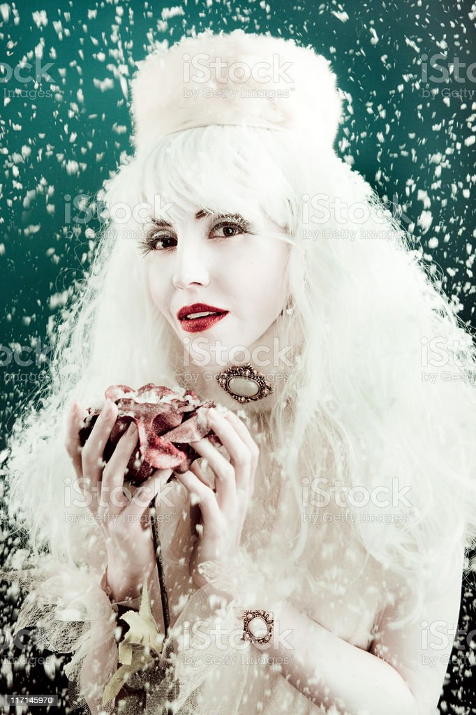 Snow Queen and Frosted Rose stock photo