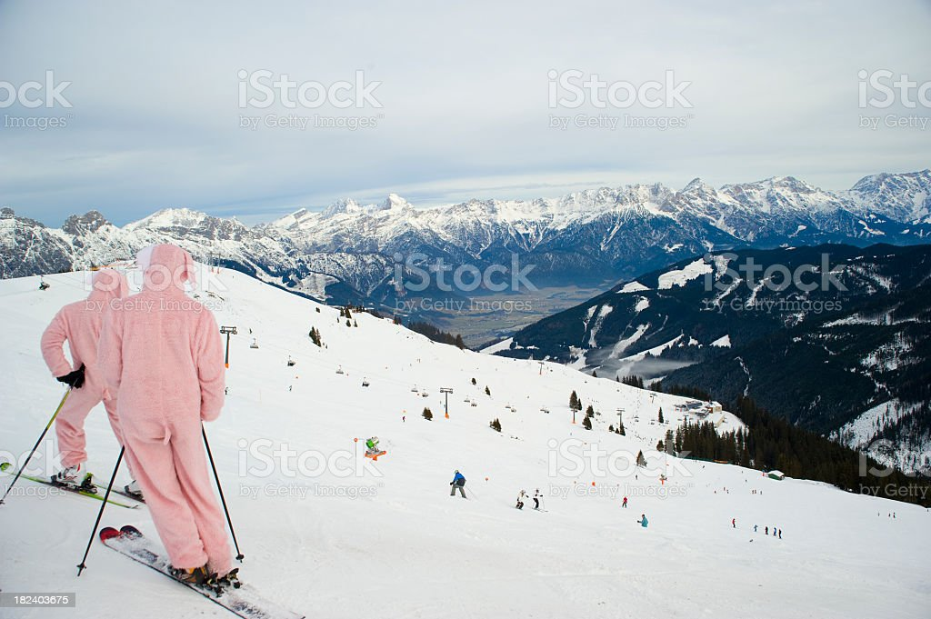 snow rabbits skiing on hill with pink costume stock photo