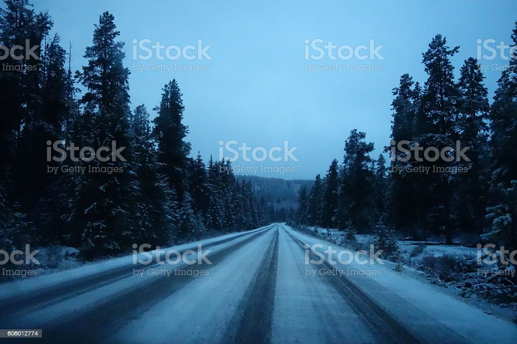 Snow road in a forest stock photo