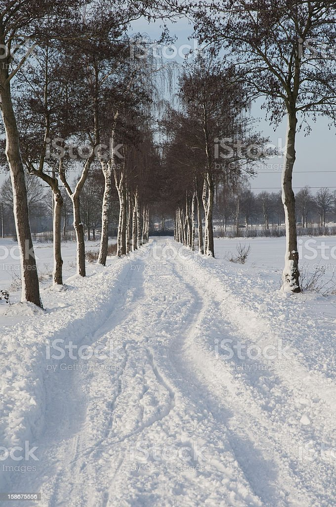 snow road royalty-free stock photo