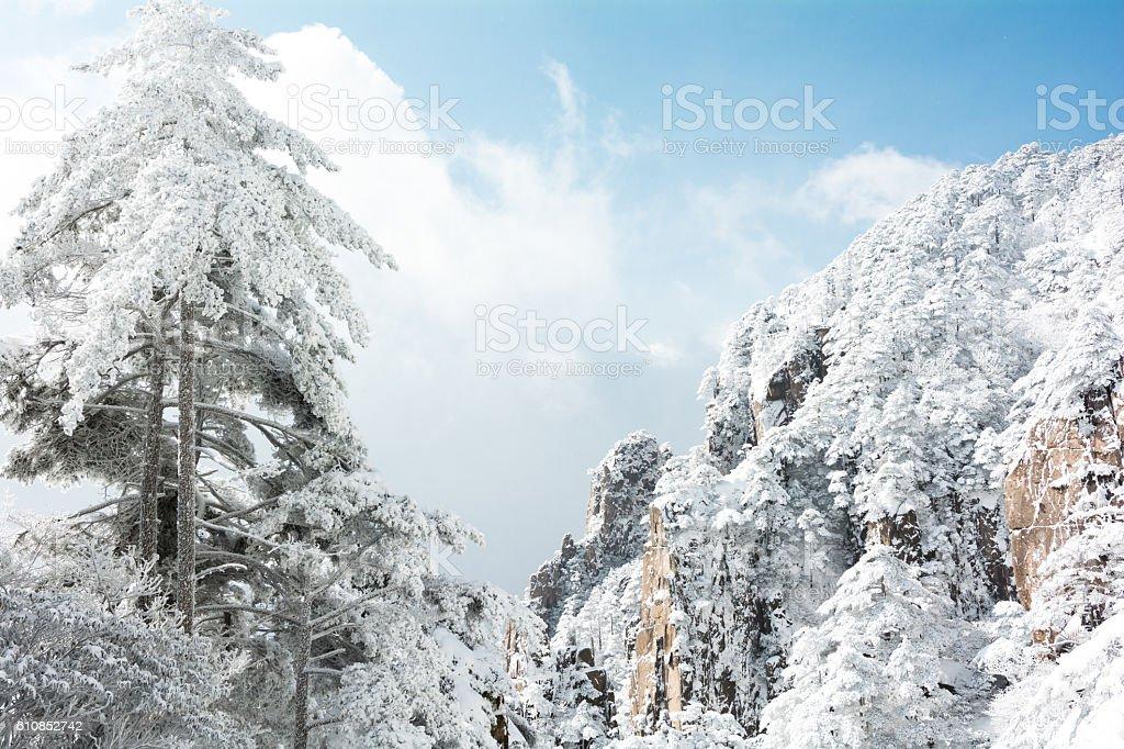 snow scene of huangshan mountain stock photo