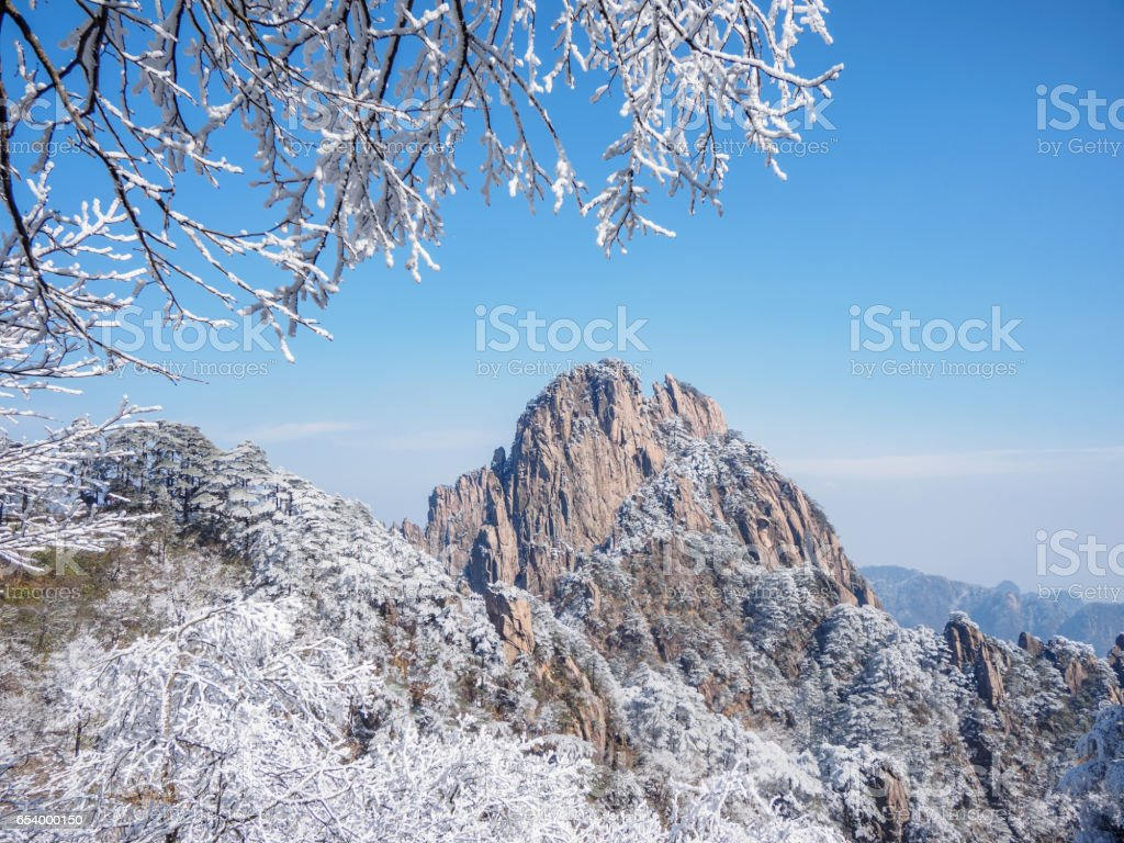 Snow scene on huangshan mountain, and tree branches under the snow. Huangshan National park is China's most famous and beautiful scenic spots. stock photo
