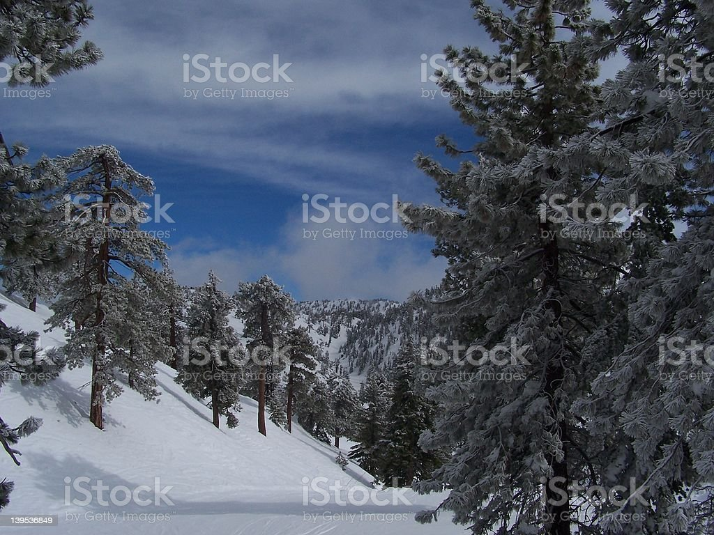Snow Scene royalty-free stock photo