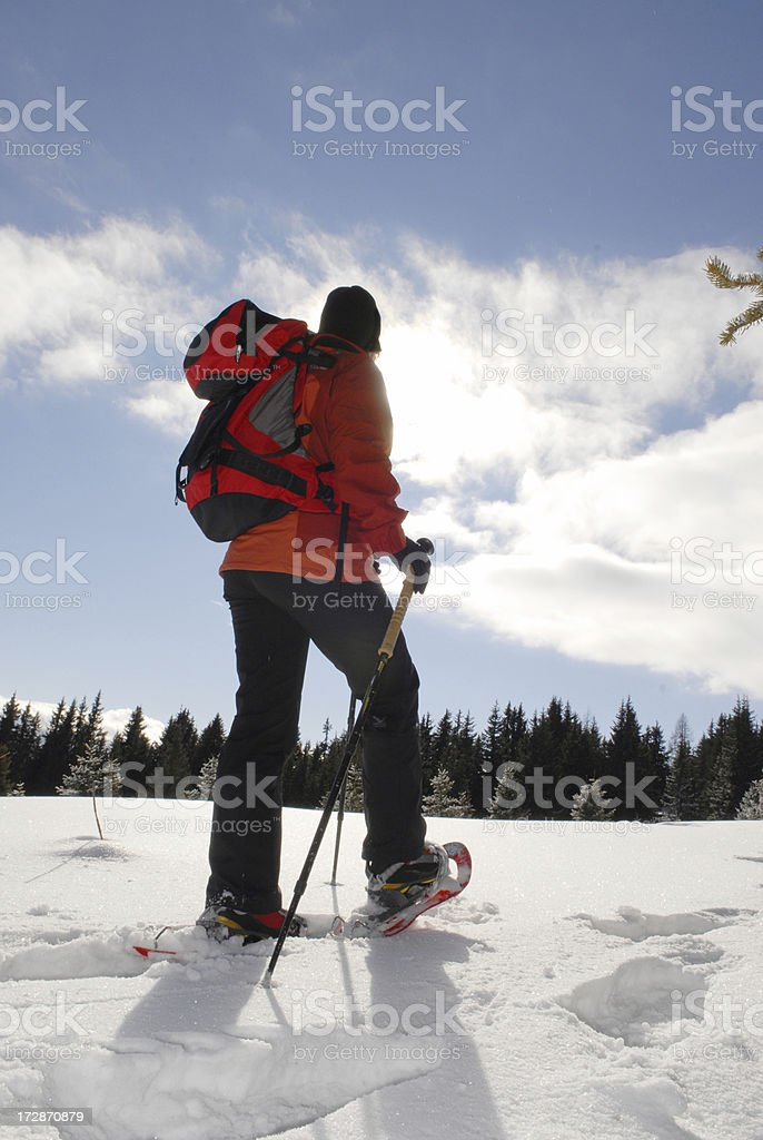 Snow Shoe stock photo