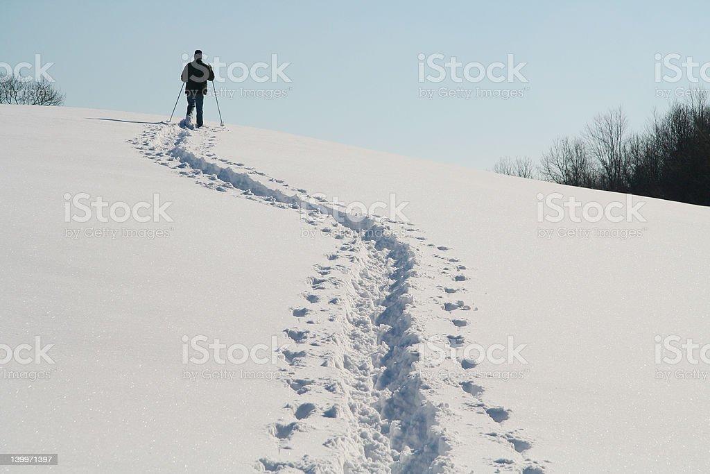 Snow Shoe Trek royalty-free stock photo