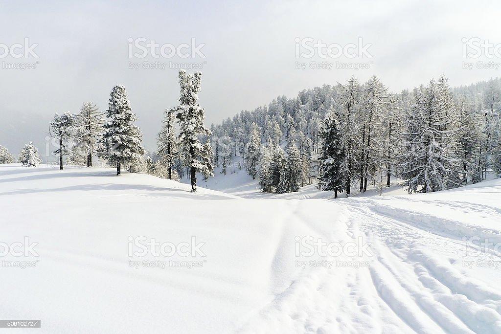 snow ski run in skiing area Via Lattea Italy stock photo