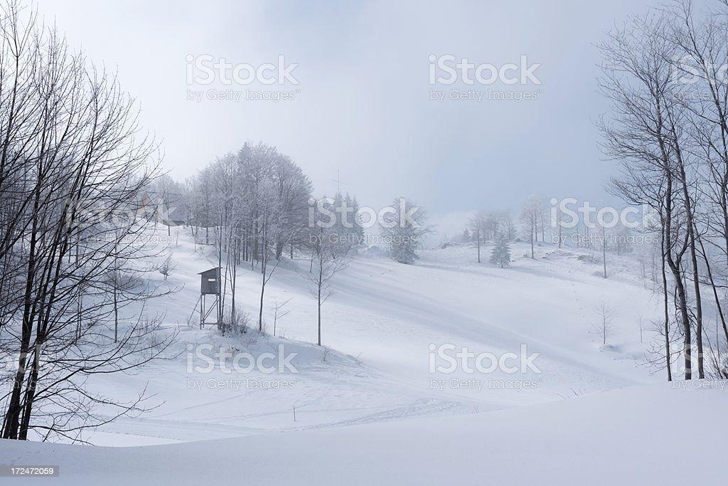 Snow Storm in Vojsko Slovenia Europe stock photo
