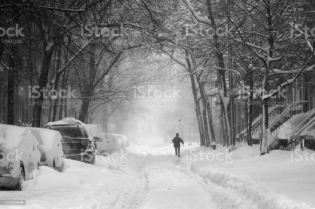 snow storm royalty-free stock photo