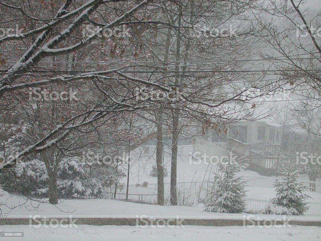 Snow Storm... royalty-free stock photo