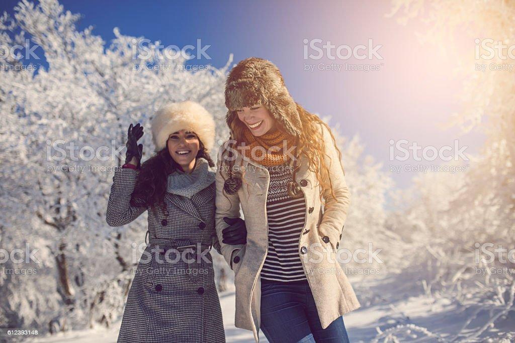 Snow, sunshine, friendship and fun stock photo