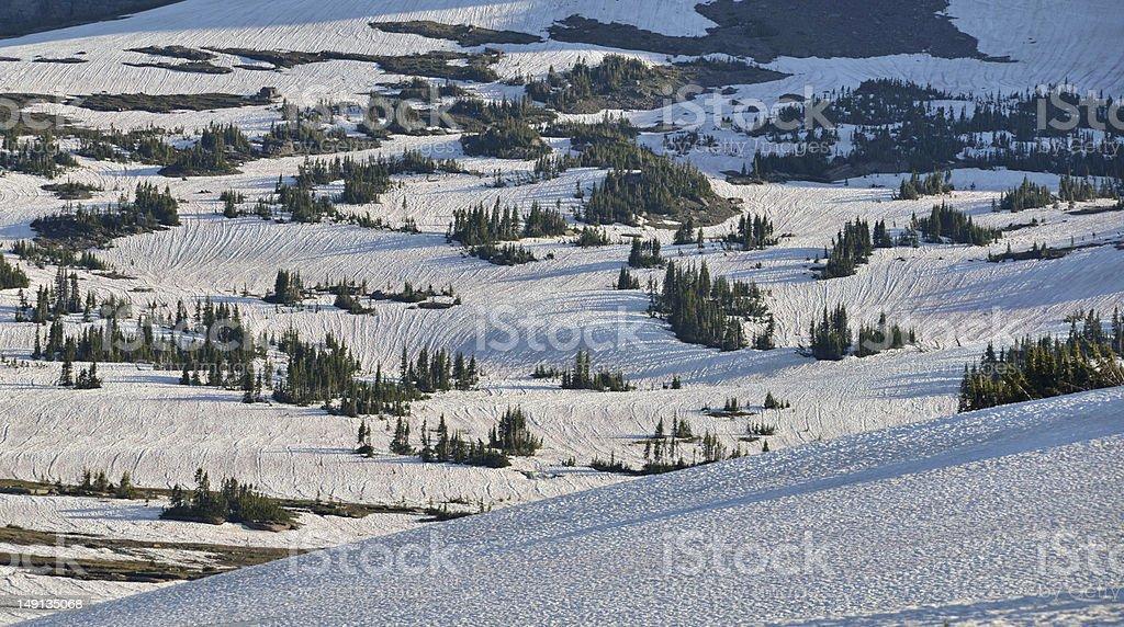 Snow texture royalty-free stock photo