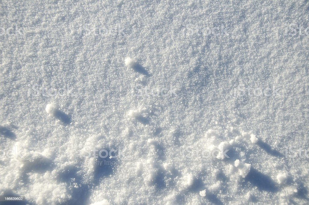 Snow Texture royalty-free stock photo