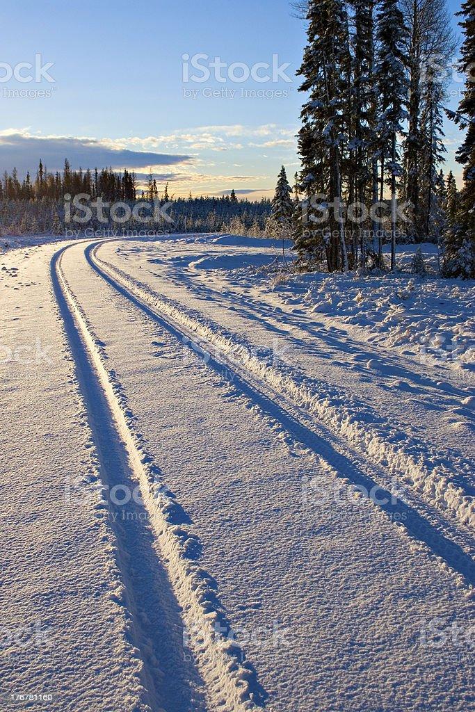 Snow Tracks royalty-free stock photo