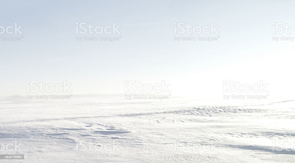 Snow tundra background, very bright with lots of copy space. stock photo