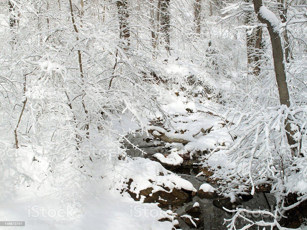 Snow White Landscape stock photo