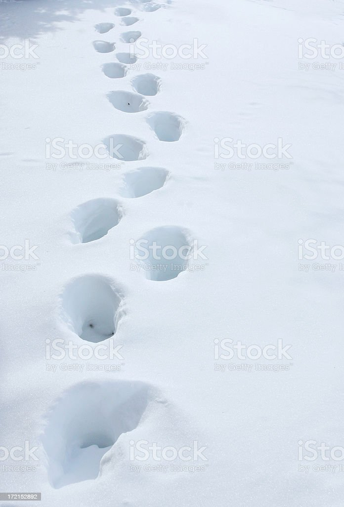 snow_footprints2 stock photo